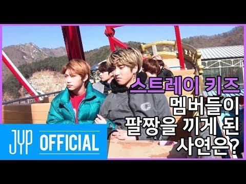 스트레이 키즈 멤버들을 벌벌 떨게 한 것의 정체는? Stray Kids: 제9구역 시즌4 EP.01