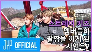 Download 스트레이 키즈 멤버들을 벌벌 떨게 한 것의 정체는?|Stray Kids: 제9구역 시즌4 EP.01 Mp3