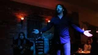 Flamenco - Fernando Gallego in Toronto, 2014 YouTube Videos