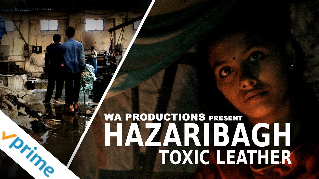 Hazaribagh: Toxic Leather   Trailer   Available now