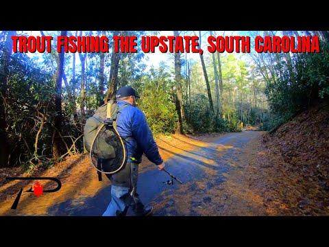 Trout Fishing Upstate South Carolina
