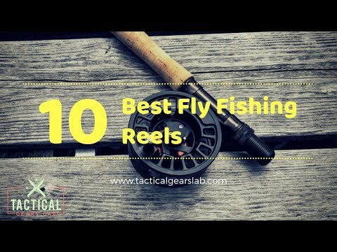 10 Best Fly Fishing Reels - Tactical Gears Lab 2020