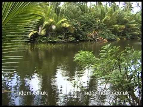 Nisbet Plantation Beach Club Hotel on the Caribbean Island of Nevis filmed by Malcolm dent