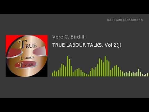 TRUE LABOUR TALKS, Vol.2(j)
