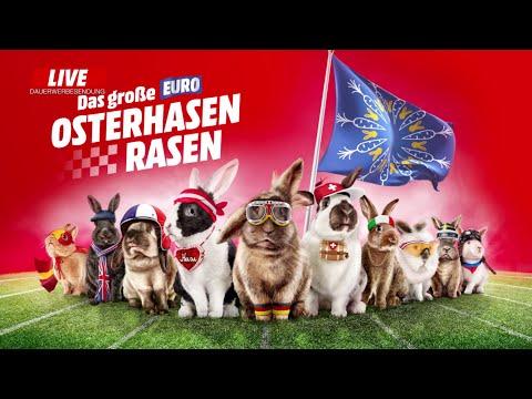 Course 1 - EURO Course de lapins de pâques | Media Markt Suisse | Française