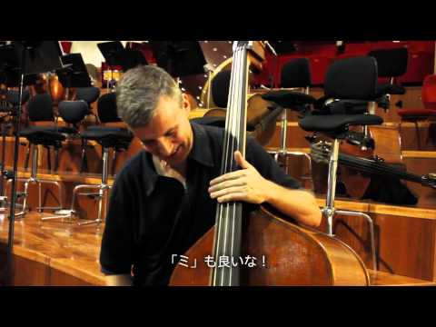 Tetsu Suzuki Double Bass Maker In Cremona, Italy 鈴木徹 コントラバスメーカー