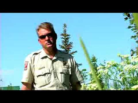How To Become A Game Warden : How To Become An Arizona Game & Fish Warden