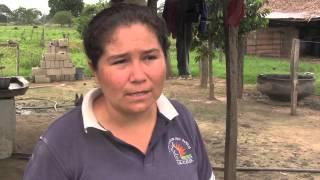 Hablan los productores de Curito Maporital del estado Barinas, aporrea tvi, junio 2014