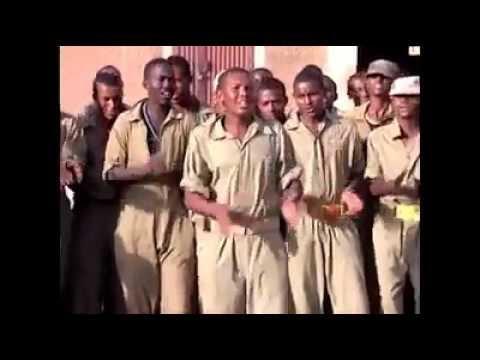The Pinnacle of Awareness Sawa Say Eritrea.