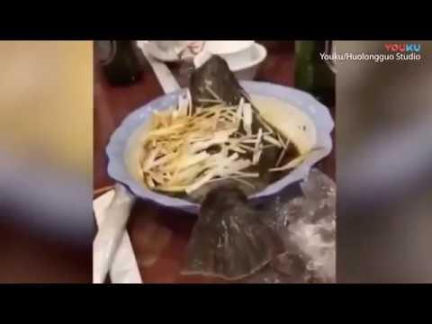 ماهي له پخېدو وروسته بېرته ژوندی کېږي(ويډيو)