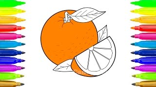 Fruit Coloring Pages  Learn Names of Fruits Coloring Book  Learn Colors, Teach Colours, Baby