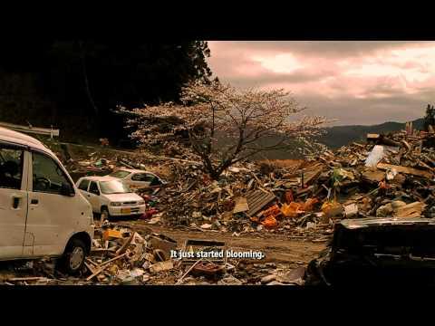 The Tsunami and the Cherry Blossom    ACADEMY AWARD® NOMINATED  Documentary Short Subject