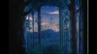 Fantasia   Schubert   Ave Maria