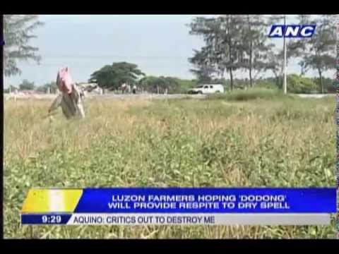 Luzon farmers hoping 'Dodong' will provide respite to dry spell