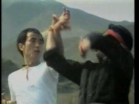Fury At Shaolin Temple - Chang Yi Tao Shapes