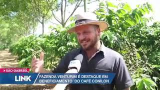 Fazenda Venturim é destaque em beneficiamento do Café Conilon