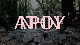 Antiphony - Kumquats/lattes/cigarettes