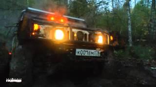 Прогулки по Вепсскому лесу