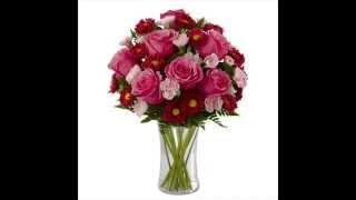 çiçek resimleri - www.izmircicek.com.tr