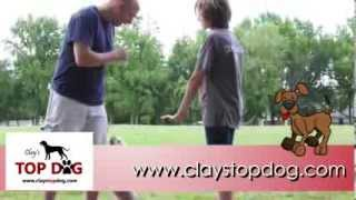 Clay's Top Dog   Training In Conway Arkansas