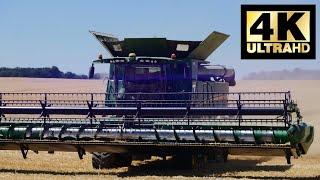 ERNTE 90 Hektar Gerste AGRAR e.G. Querfurt 2019 in 4k!!! und O.-Ton!!!