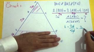Benzerlik 3 Şenol Hoca Matematik