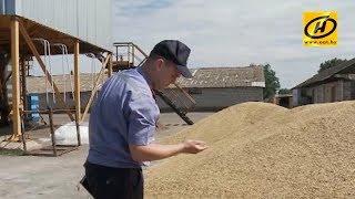 Милиция проконтролирует аграриев, чтобы работы на полях шли гладко