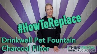 http://www.ThinkCrucial.com ** Replacing your Drinkwell Pet Fountai...