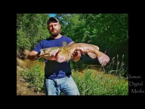 Running Bank Poles | Chariton County, MO