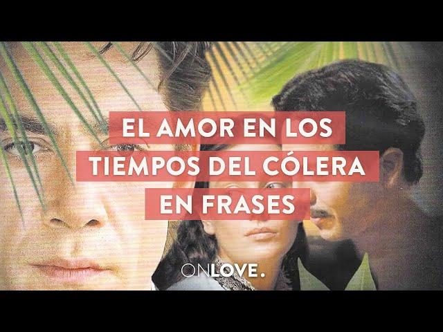 El Amor En Los Tiempos Del Colera En Frases Onpost