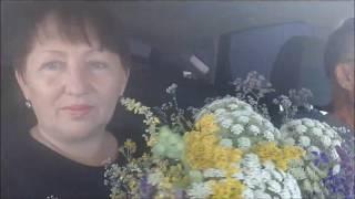 Vlog/ Гости из Новокуйбышевска/Новый рецепт салата..