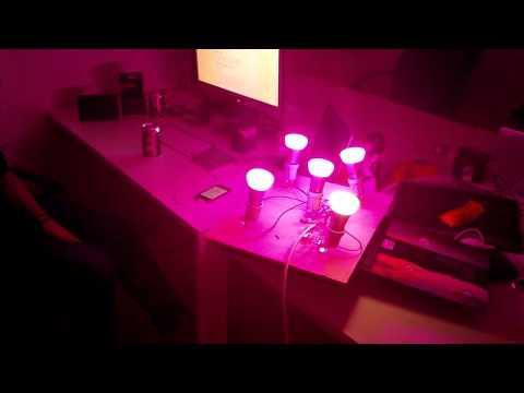 Music Strobe Lights (bitrate based)
