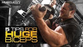 5 TIPS FOR HUGE BICEPS