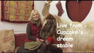 Live from Cupcake's dream stable: TV episode 103