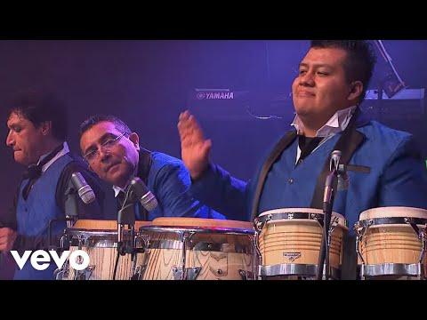 Los Ángeles Azules – Cumbia Coqueta (Live)