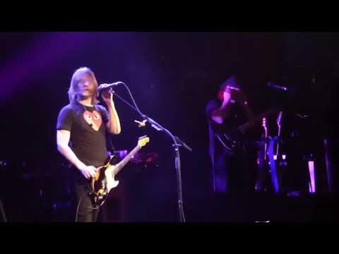 Steven Wilson Celebrity