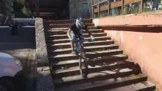 Cómo Bajar Escaleras