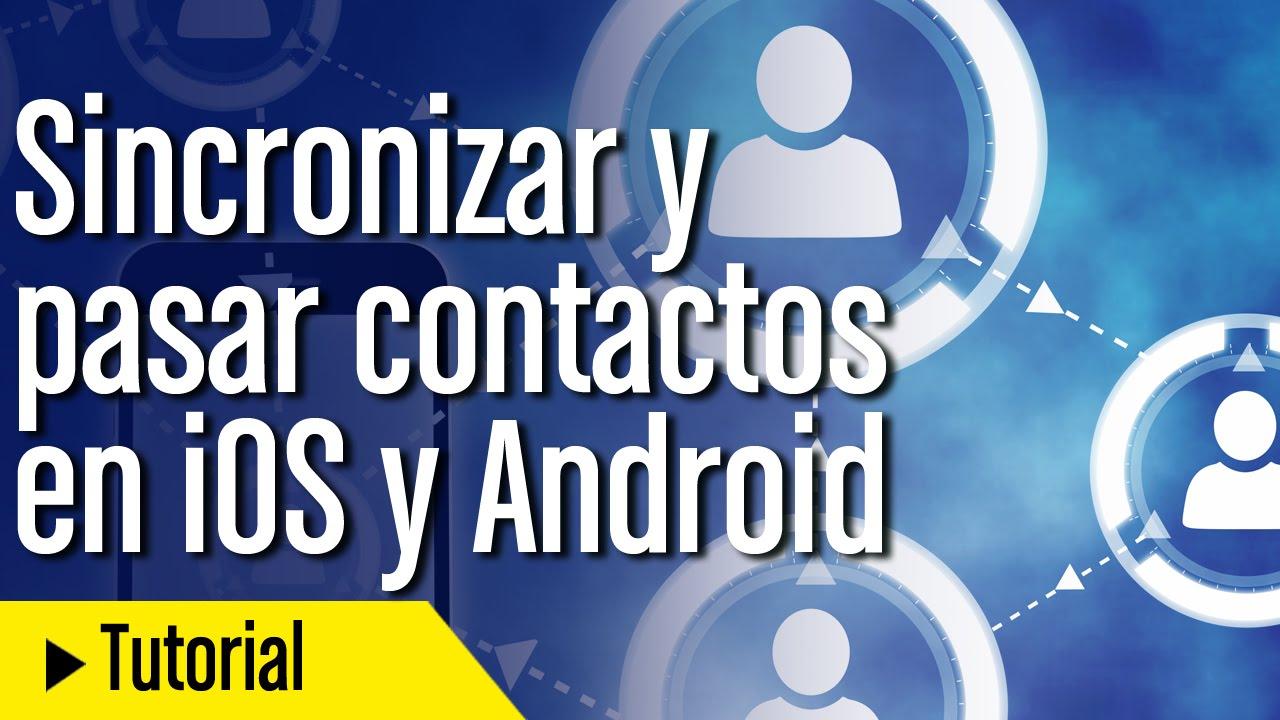 Sincronizar y pasar contactos de iPhone a And…