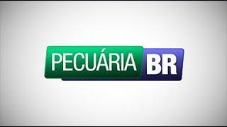 Programa Pecuária BR  -  22/11/2017 thumbnail
