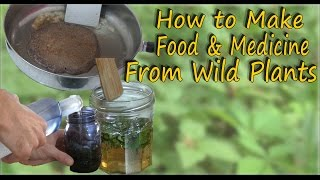 Wild Edible & Medicinal Plant Recipes - A Video Guide