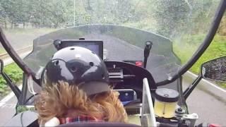 バイク犬、ティナ です。 見かけたら声をかけてネ。(^_-)-☆ 今回は雨の...