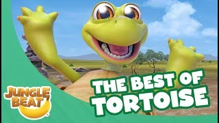 The Best of Tortoise - Jungle Beat Compilation [Full Episodes]