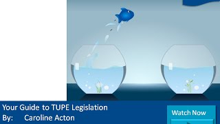 Your Guide to TUPE Legislation
