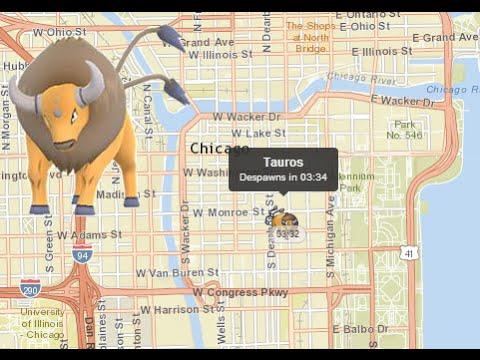 Tauros Found in Chicago USA Map Pokemon Go! - YouTube