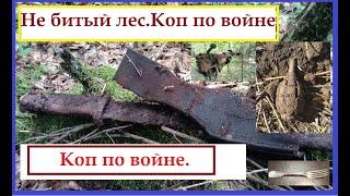 """Коп по войне. """"Боевой  лес"""".Калининград."""