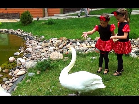 Детские экскурсии в Мышкин ( или куда сходить с ребенком в
