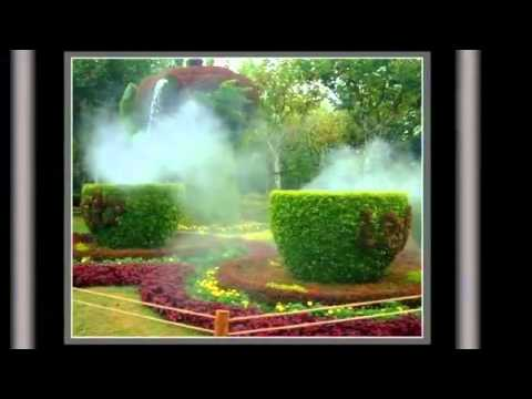 Canada   Montreal Topiary Gardens  YouTube