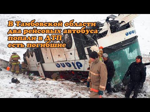 В Тамбовской области два рейсовых автобуса попали в ДТП есть погибшие