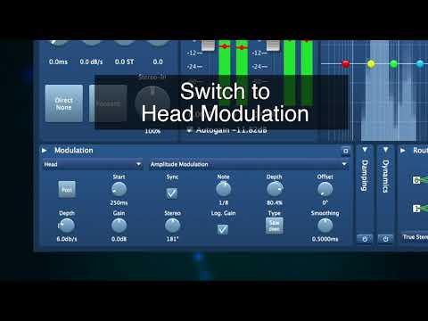 SIR3 Amplitude Modulation Demo