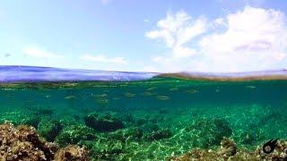"Eken V8s & Telesin Dome 6""   Underwater 4k Uhd Part 1. (budikovac)"